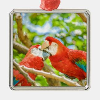 Ecuadorian Parrots at Zoo, Guayaquil, Ecuador Silver-Colored Square Decoration
