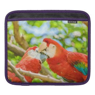 Ecuadorian Parrots at Zoo, Guayaquil, Ecuador Sleeves For iPads