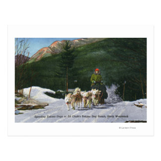 Ed Clark's Eskimo Dog Ranch, Dogsledding Postcard