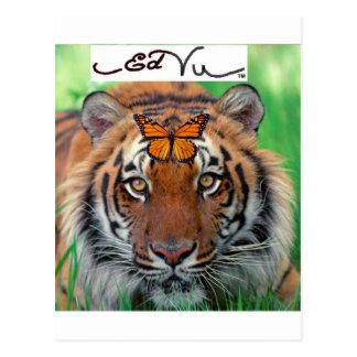 Ed Vu Tiger Monarch butterfly Post Card