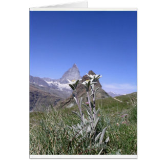 Edelweiss and Matterhorn Card
