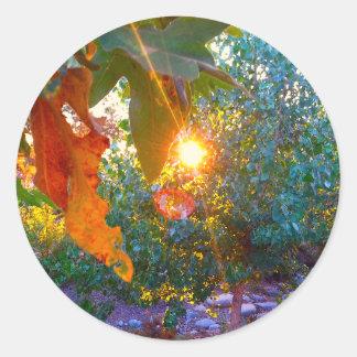 Eden Sunset Classic Round Sticker