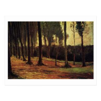Edge of a Wood, Vincent van Gogh Postcard