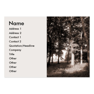 Edge of the Woods Pack Of Chubby Business Cards