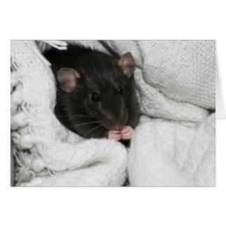 Edgworth The Rat Card