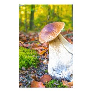 Edible porcini mushroom on forest floor in fall custom stationery
