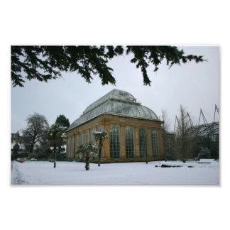 Edinburh Royal Botanic Garden Under Snow Art Photo