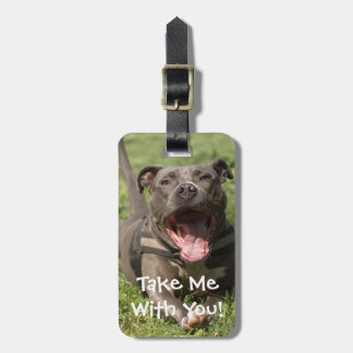 Editable Brown Pitbull In Grass Luggage Tag