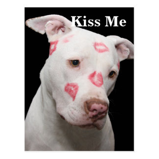 Editable Pitbull Lover Postcard