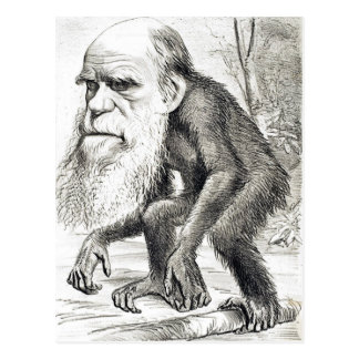 Editorial Cartoon Of Charles Darwin 1871 Postcard