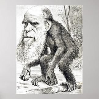 Editorial Cartoon Of Charles Darwin 1871 Poster