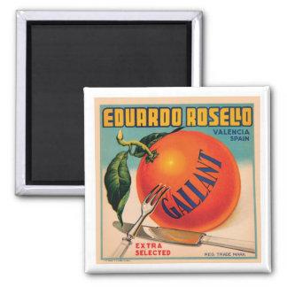 Eduardo Rosello Valencia Spain VIntage Crate Labe Square Magnet
