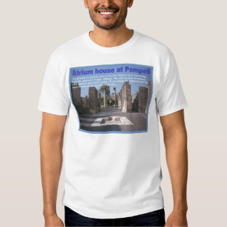 Education, History, Romans, Atrium house, Pompeii T-shirts