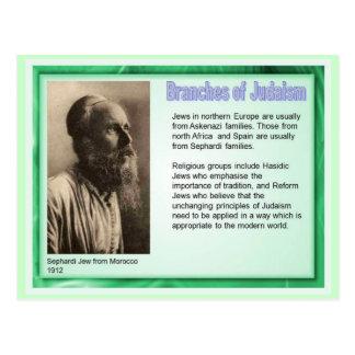 Education,  Religion,  Judaism,Branches of Judaism Postcard