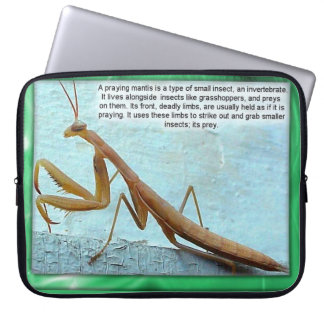 Education, Science, Insects, Praying Mantis Laptop Sleeve