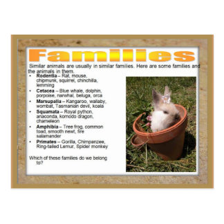 Education, Science, Life Science, Families Postcard