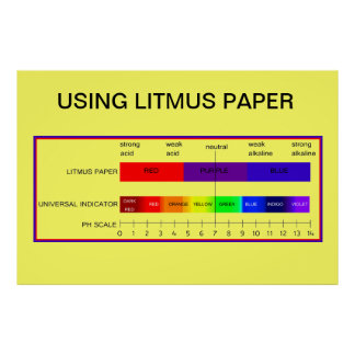 Education, Science, Using Litmus Paper Poster