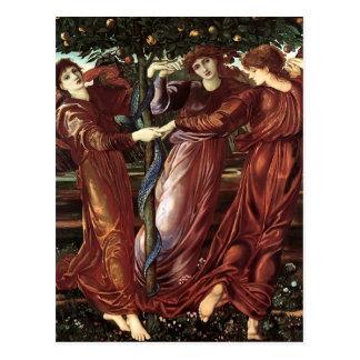 Edward Burne-Jones: The Garden Of The Heserides Postcard