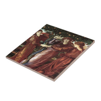 Edward Burne-Jones: The Garden Of The Heserides Small Square Tile