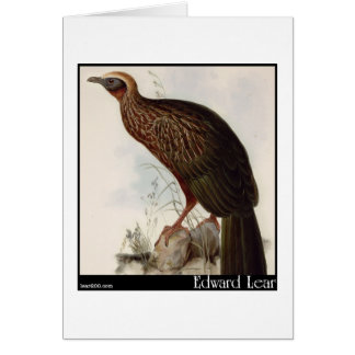 Edward Lear's Pileated Guan Greeting Card