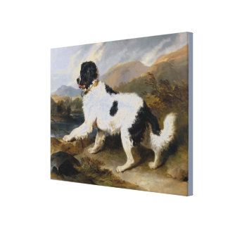 Edwin Henry Landseer Lion A Newfoundland Dog Canvas Print