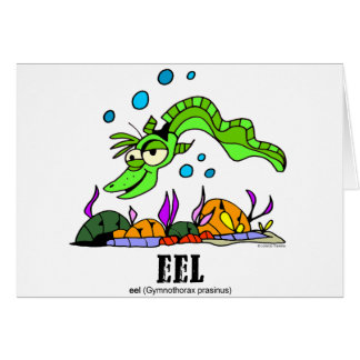 Eel by Lorenzo © 2018 Lorenzo Traverso7 Card