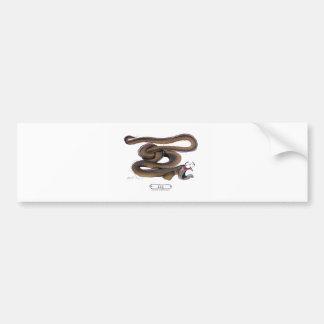Eel, tony fernandes bumper stickers