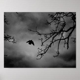 Eerie Bird in Flight Poster