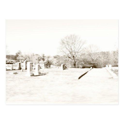 Eerie Cemetery Postcard