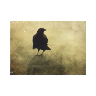 Eerie Crow In Fog Canvas Print