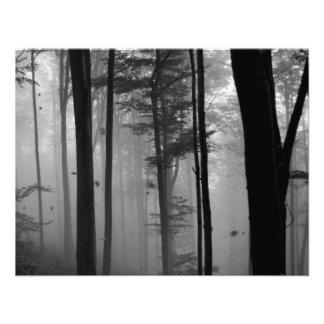 EERIE FOREST TREES LEAVES B W CUSTOM INVITE