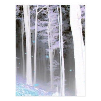 EERIE FOREST TREES LEAVES COLOR NEGATIVE POSTCARD