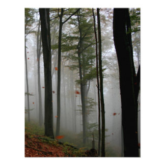 EERIE FOREST TREES LEAVES FULL FALL COLORS INVITE