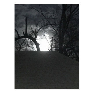 Eerie Morning Postcard