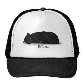 Effort Cat Hat