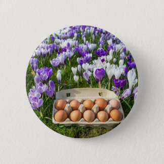 Egg box with chicken eggs in crocuses 6 cm round badge