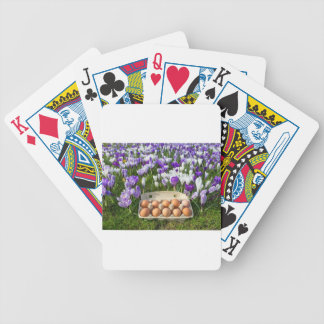 Egg box with chicken eggs in crocuses bicycle playing cards