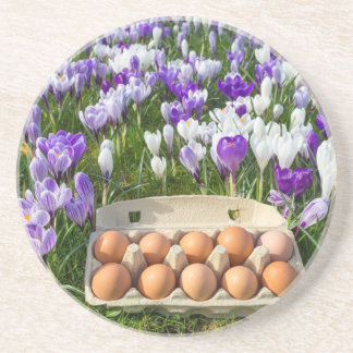 Egg box with chicken eggs in crocuses coaster