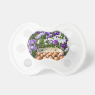 Egg box with chicken eggs in crocuses dummy
