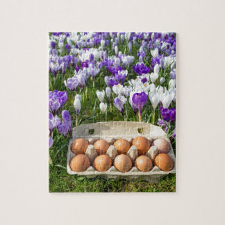 Egg box with chicken eggs in crocuses jigsaw puzzle