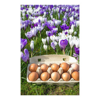 Egg box with chicken eggs in crocuses stationery