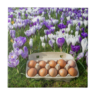 Egg box with chicken eggs in crocuses tile
