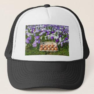 Egg box with chicken eggs in crocuses trucker hat