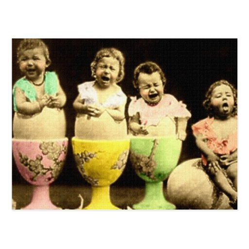 Egg Cup Babies Post Cards