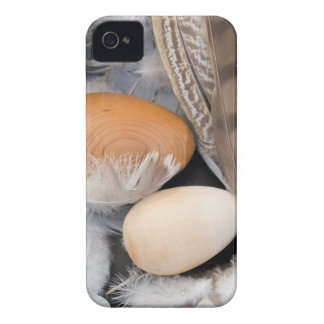 Eggs & feathers iPhone 4 case