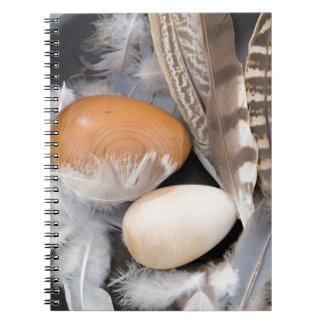 Eggs & feathers notebooks