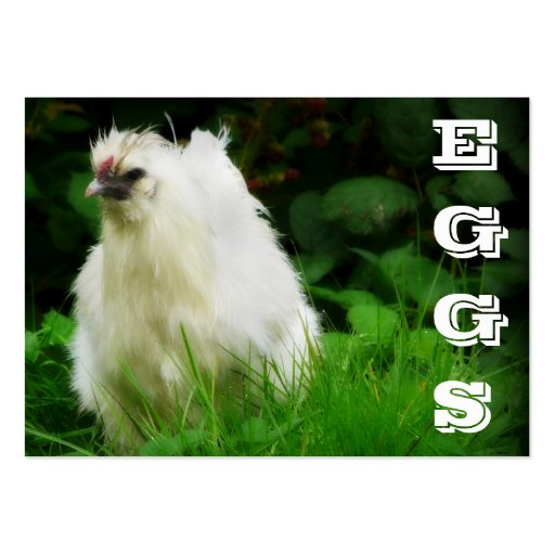 EGGS  Free Range Laying Chicken business card