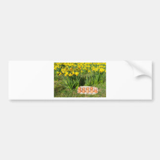 Eggs in box on grass with yellow daffodils bumper sticker