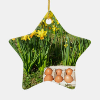 Eggs in box on grass with yellow daffodils ceramic star decoration