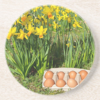 Eggs in box on grass with yellow daffodils coaster